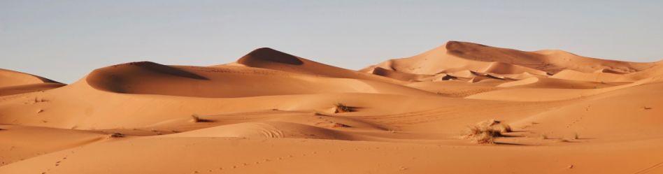 Escritos en la arena: 6 lecturas clásicas para un viaje al desierto